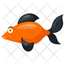 Black Smudge Goldfish Icon
