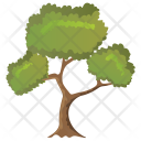 Black Willow Tree Icon