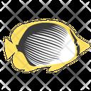 Blackback Butterfly Fish Sea Creature Animal Icon