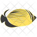 Blacktail Butterfly Fish Sea Creature Animal Icon