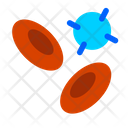 Blood Cells Red Blood Cells White Blood Cells Icon
