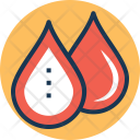 Complete Blood Count Icon