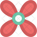 Bloodroot Flower Spring Icon