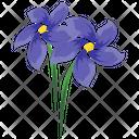 Bloodroot Flower Icon