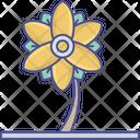 Bloodroot Bloodroot Flower Flower Icon