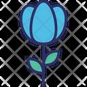 Bloom Blooming Flower Easter Flower Icon