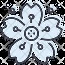 Cherryblossom Cherry Blossom Icon