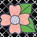 Blossom Flower Petals Icon