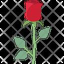 Blossom Flower Love Symbol Icon