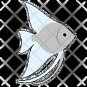 Blue Angelfish Sea Creature Animal Icon
