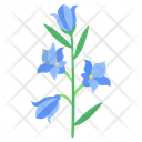 Blue Bell Flower Blossom Icon