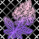 Blue Bonnet Icon