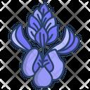Blue Bonnet Flower Flowers Icon
