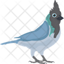 Blue Jay Feather Creature Fowl Icon