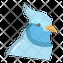 Blue Jay Icon