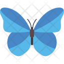 Blue Morpho Butterfly Icon