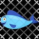 Blue Oranda Goldfish Fins Icon