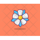 Blue Plumbago Spring Flower Agriculture Icon