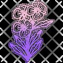 Blue Plumbago Icon