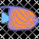 Blue Ring Angelfish Sea Creature Animal Icon