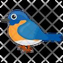 Blue Sparrow Canadian Sparrow Indigo Bunting Icon