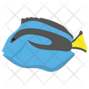 Blue Tang Icon