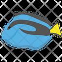 Blue Tang Tang Fish Fish Icon