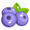 Blueberries Fruit Healthy Food Icon