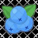 Blueberries Cyanococcus Ripe Fruit Icon