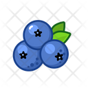 Blueberries Fruits Fruite Icon