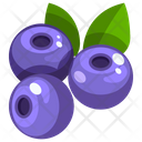 Blueberry Icon