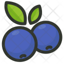 Blueberry Blueberries Fruit Icon