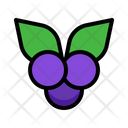 Blueberry Fruit Berry Icon