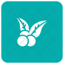 Blueberry Food Fruits Icon