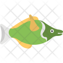 Bluegill Freshwater Fish Icon