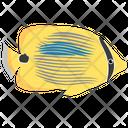 Bluespot Butterfy Fish Icon