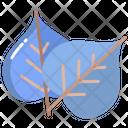 Bodhi Leaf Icon