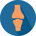 Body Born Joint Icon