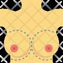 Body Parts Breast Icon