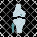 Joint Body Bone Icon