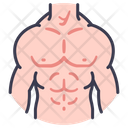 Body male muscle Icon