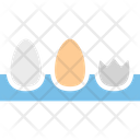 Breakfast Eggs Eggs Box Icon