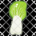Vegetable Leafy Vegetable Food Icon