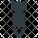 Bomb Blast Boom Icon