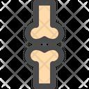 Bone Skeleton Health Icon