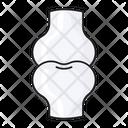 Bone Skeleton Joint Icon
