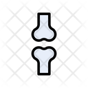 Bone Joint Icon