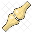 Joint Bone Skeleton Icon