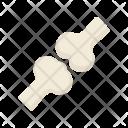 Joint Bone Icon
