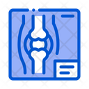 Bone X Ray Disease Icon